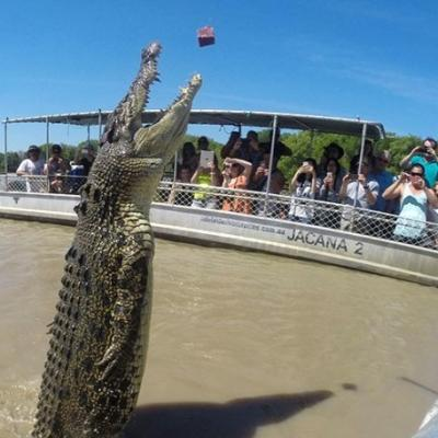 BIG4 Howard Springs Darwin Attractions Adelaide River Cruises